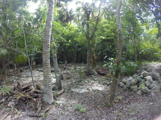 Lot with 245 sqm in Playa del Carmen – Lot