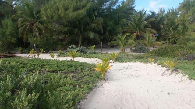 Lot with lovely sandy area and beach near Boca Paila. – Lot