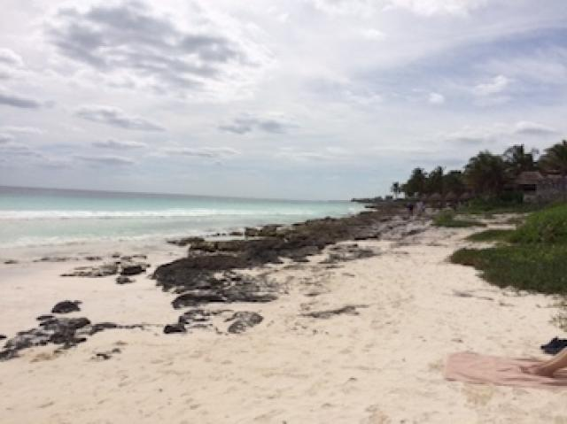 Residencial lot with incredible cenotes – Lot