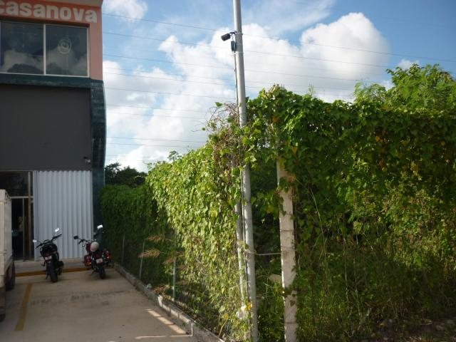 17,179 sq ft. Best location Lot Federal Highway,Playa del Carmen – Commercial